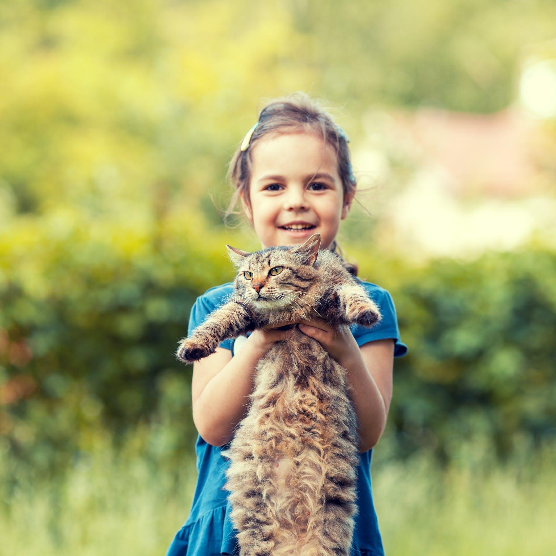 Child Picking Up Cat